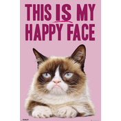 Grumpy Cat  Happy Face Maxi Poster