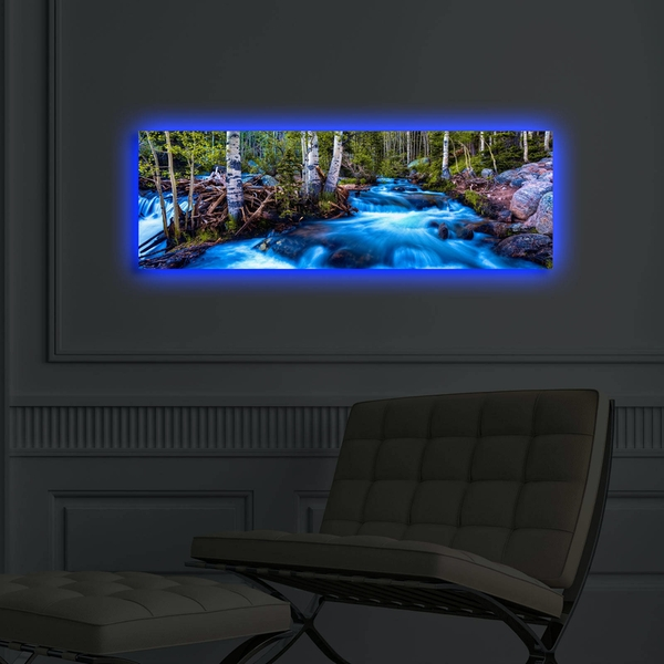3090DACT-38 Multicolor Decorative Led Lighted Canvas Painting