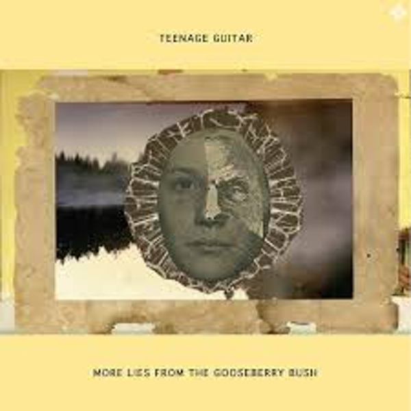 Teenage Guitar ‎– More Lies From The Gooseberry Bush Vinyl