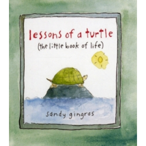 Lessons of a Turtle : (The Little Book of Life)