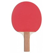 Reversed Sponge Table Tennis Bat