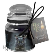 Dragon's Blood Invoking (Pack 6) Spell Candle