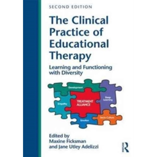 The Clinical Practice of Educational Therapy : Learning and Functioning with Diversity