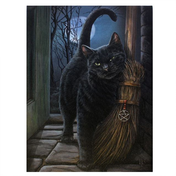 Small Brush With Magick Canvas Picture by Lisa Parker