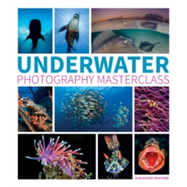 Underwater Photography Masterclass by Alex Mustard (Paperback, 2016)