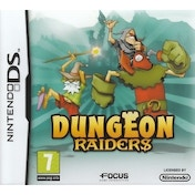 Dungeon Raiders Game DS