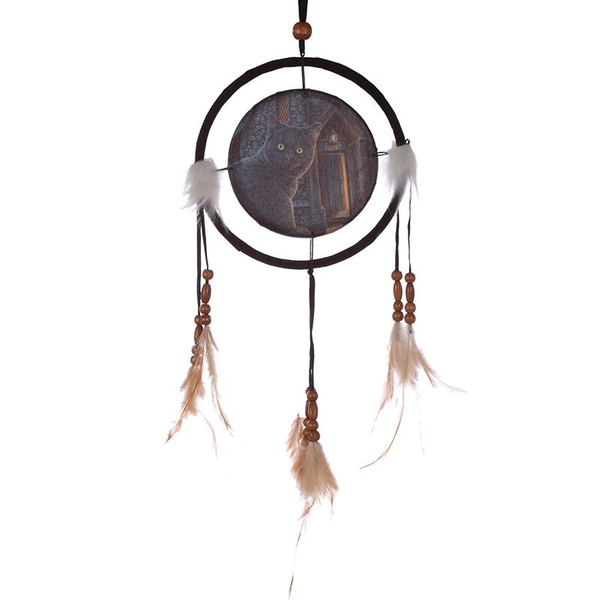 Decorative Cat Design What Lies Within 16cm Dreamcatcher
