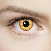 Golden Vampire 1 Day Halloween Coloured Contact Lenses (MesmerEyez XtremeEyez)