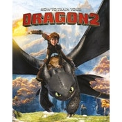 How to Train Your Dragon 2 Rocks Mini Poster