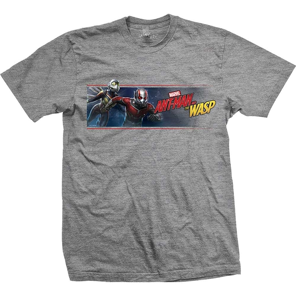 Marvel Comics - Ant Man & The Wasp Banner Unisex Large T-Shirt - Grey