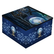 The Witches Apprentice Mirror Box