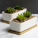 Ceramic Planter & Bamboo Base | M&W x2 Rectangular  - Image 2