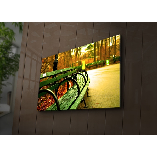 4570?ACT-71 Multicolor Decorative Led Lighted Canvas Painting