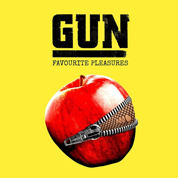 Gun - Favourite Pleasures Vinyl