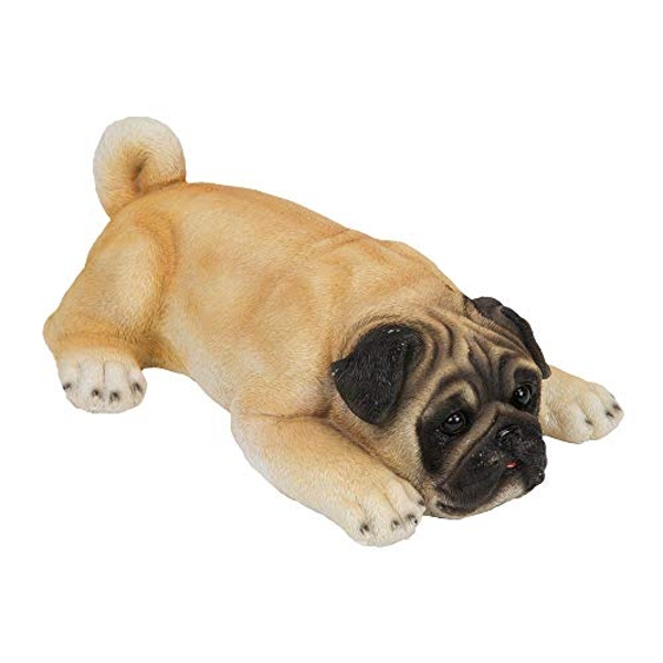 Best of Breed Collection - Pug Puppy