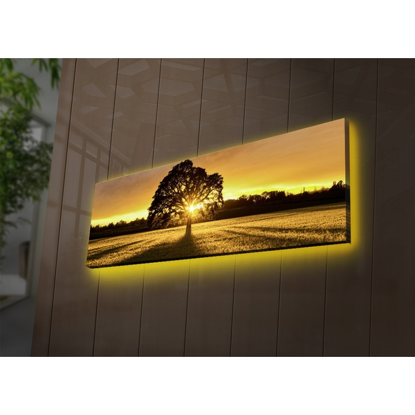 3090DACT-68 Multicolor Decorative Led Lighted Canvas Painting
