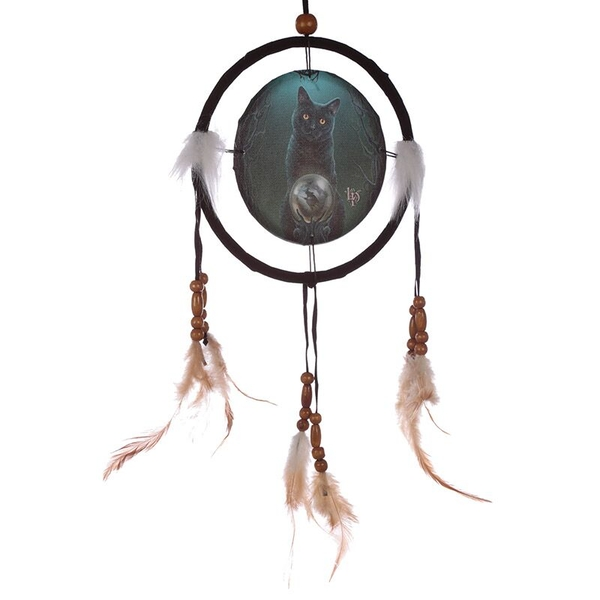 Rise of the Witches 16cm Dreamcatcher