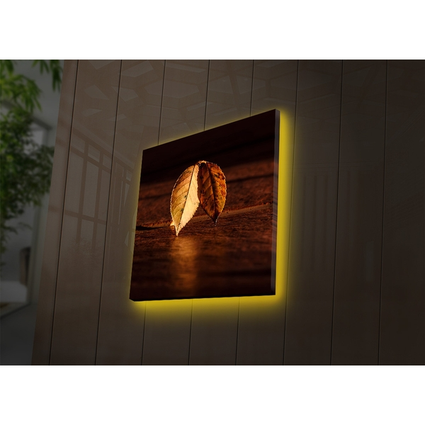4040DACT-36 Multicolor Decorative Led Lighted Canvas Painting