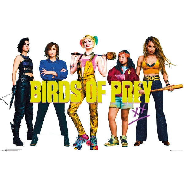 Birds of Prey Group Poster