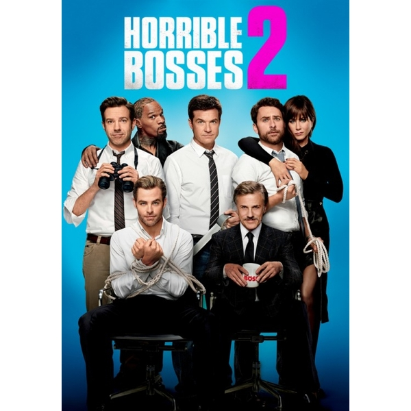 Horrible Bosses 2 DVD