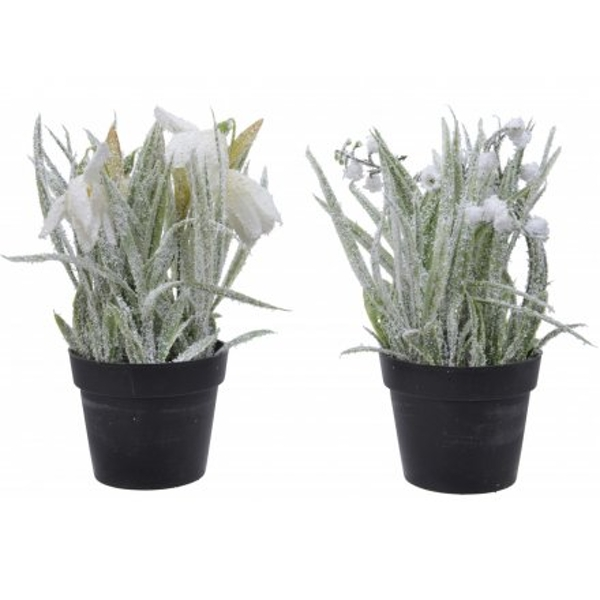 Artificial Potted Plants With Glitter Frost 14cm