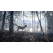 The Hunter Call Of The Wild 2019 Edition Xbox One Game - Image 6