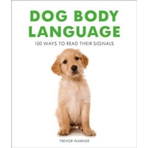 Dog Body Language : 100 Ways To Read Their Signals