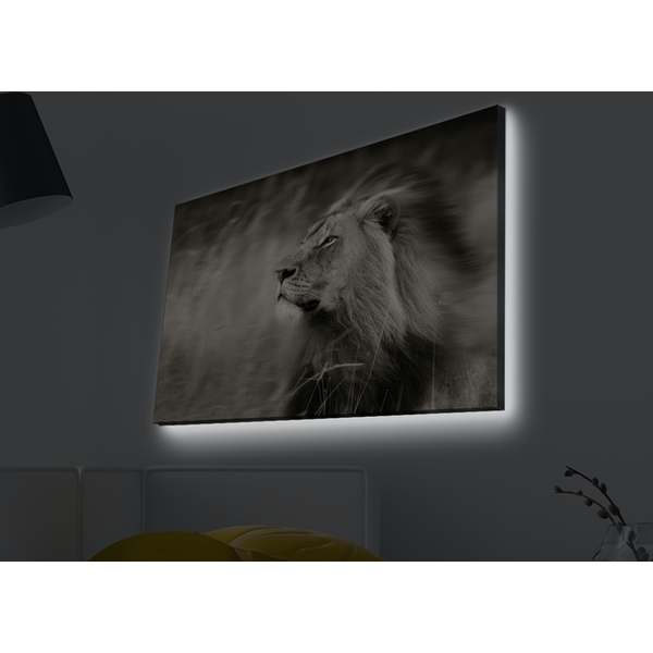 4570MDACT-038 Multicolor Decorative Led Lighted Canvas Painting