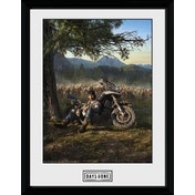 Days Gone  Collector Print