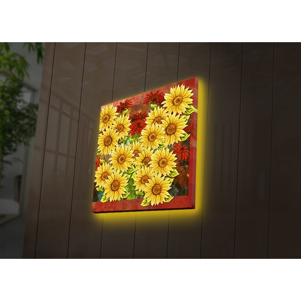 4040DACT-51 Multicolor Decorative Led Lighted Canvas Painting