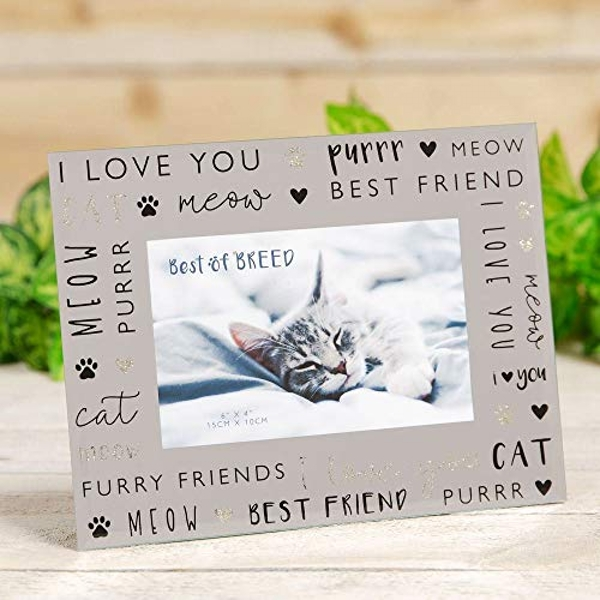 "6"" x 4"" - Best of Breed Glass Photo Frame - Cat"