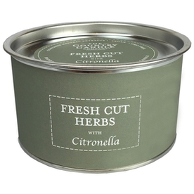 Fresh Cut Herbs Citronella Candle