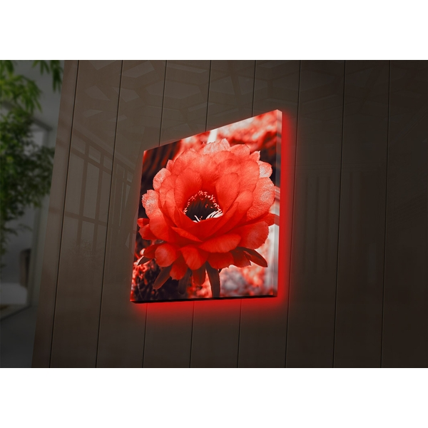4040DACT-46 Multicolor Decorative Led Lighted Canvas Painting