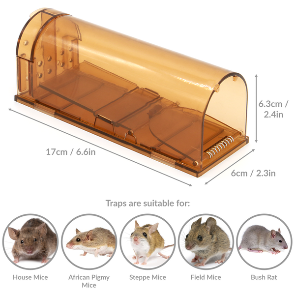 Humane Mouse & Rodent Trap | M&W - Image 3