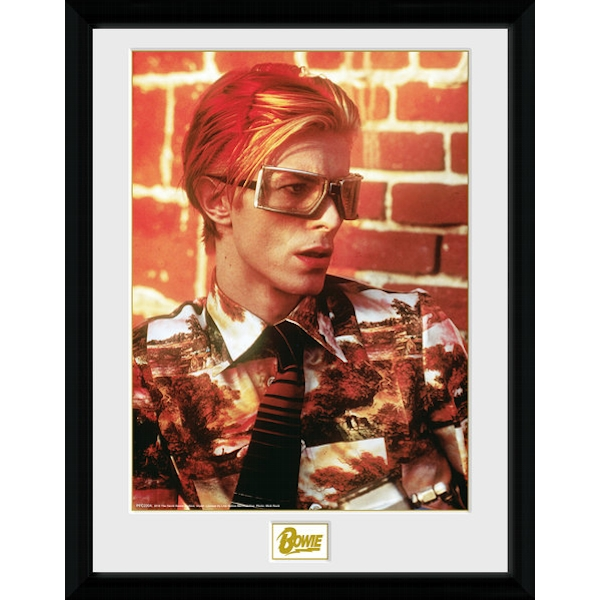 David Bowie Glasses Collector Print