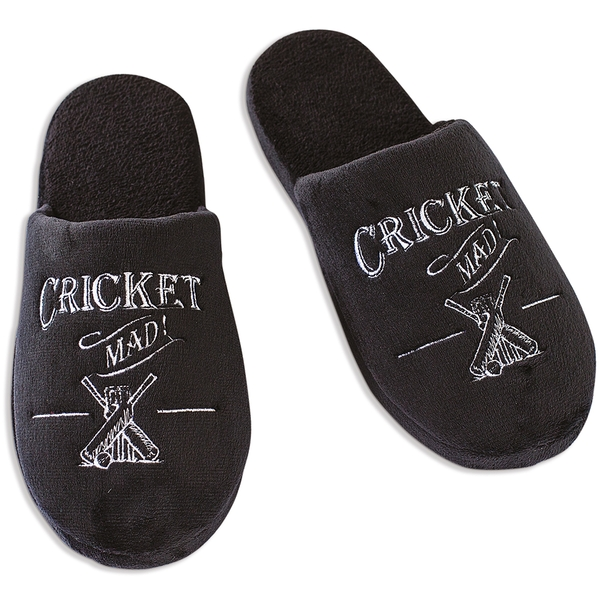 Ultimate Gift for Man Slippers Small UK Size 7-8 Cricket
