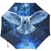Awake your magic Umbrella by Anne Stokes