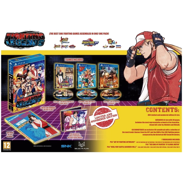 SNK Fighting Legends PS4 Game