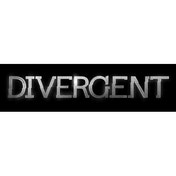 Divergent Shuffling The Deck Card Game