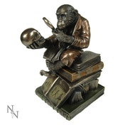 Darwinism of Evolutionary Theory Monkey Figurine