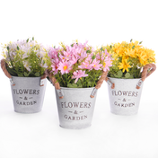 Artificial Daisy Plants - Set of 3 | M&W