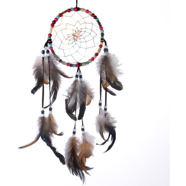 Multi Colored Dream Catcher