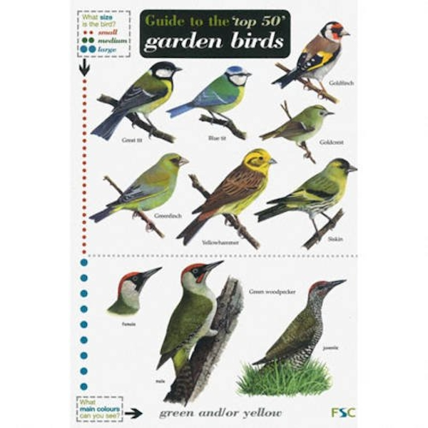 Guide to the Top 50 Garden Birds by Edward Jackson, Andy Simms (2010, Paperback)
