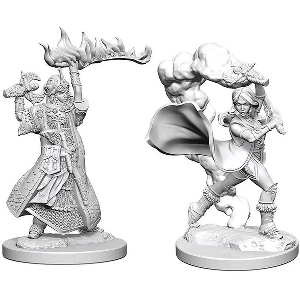 Pathfinder Deep Cuts Unpainted Miniatures (W1) Human Female Cleric