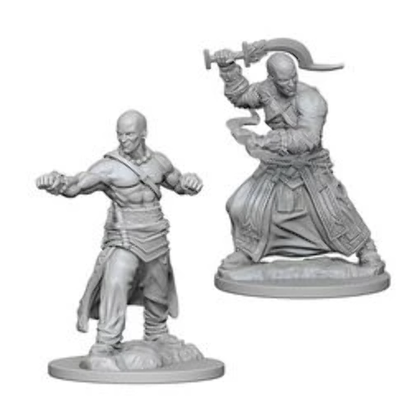 Pathfinder Deep Cuts Unpainted Miniatures (W1) - Human Male Monk