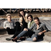 One Direction Rooftop Maxi Poster