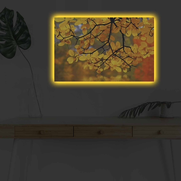 4570DHDACT-044 Multicolor Decorative Led Lighted Canvas Painting