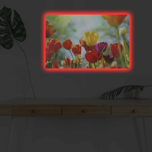 4570DHDACT-078 Multicolor Decorative Led Lighted Canvas Painting