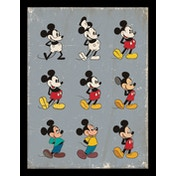Mickey Mouse - Evolution Framed 30 x 40cm Print