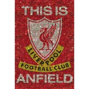 Liverpool Mosaic Maxi Poster
